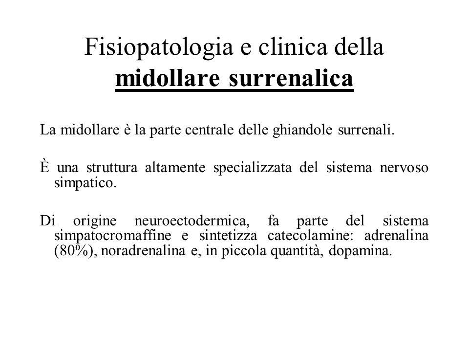 Fisiopatologia e clinica della midollare surrenalica La midollare è la parte centrale delle ghiandole surrenali.