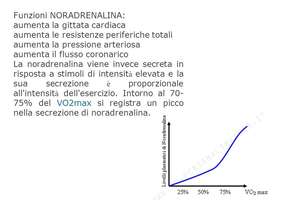 Funzioni NORADRENALINA: aumenta la gittata cardiaca aumenta le resistenze periferiche totali aumenta la pressione arteriosa aumenta il flusso coronari