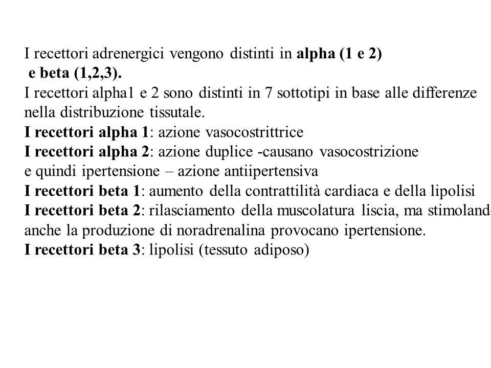 I recettori adrenergici vengono distinti in alpha (1 e 2) e beta (1,2,3). I recettori alpha1 e 2 sono distinti in 7 sottotipi in base alle differenze