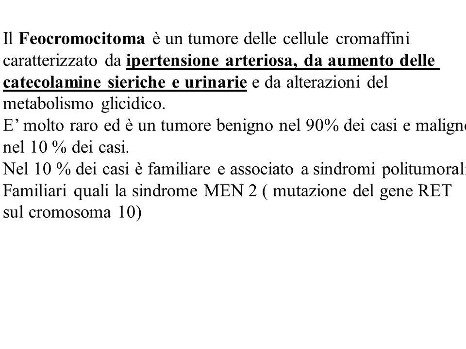 Il Feocromocitoma è un tumore delle cellule cromaffini caratterizzato da ipertensione arteriosa, da aumento delle catecolamine sieriche e urinarie e da alterazioni del metabolismo glicidico.