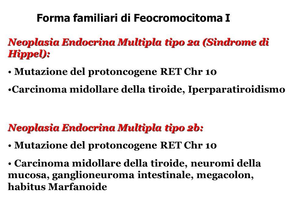 Forma familiari di Feocromocitoma I Neoplasia Endocrina Multipla tipo 2a (Sindrome di Hippel): Mutazione del protoncogene RET Chr 10 Mutazione del protoncogene RET Chr 10 Carcinoma midollare della tiroide, IperparatiroidismoCarcinoma midollare della tiroide, Iperparatiroidismo Neoplasia Endocrina Multipla tipo 2b: Mutazione del protoncogene RET Chr 10 Mutazione del protoncogene RET Chr 10 Carcinoma midollare della tiroide, neuromi della mucosa, ganglioneuroma intestinale, megacolon, habitus Marfanoide Carcinoma midollare della tiroide, neuromi della mucosa, ganglioneuroma intestinale, megacolon, habitus Marfanoide
