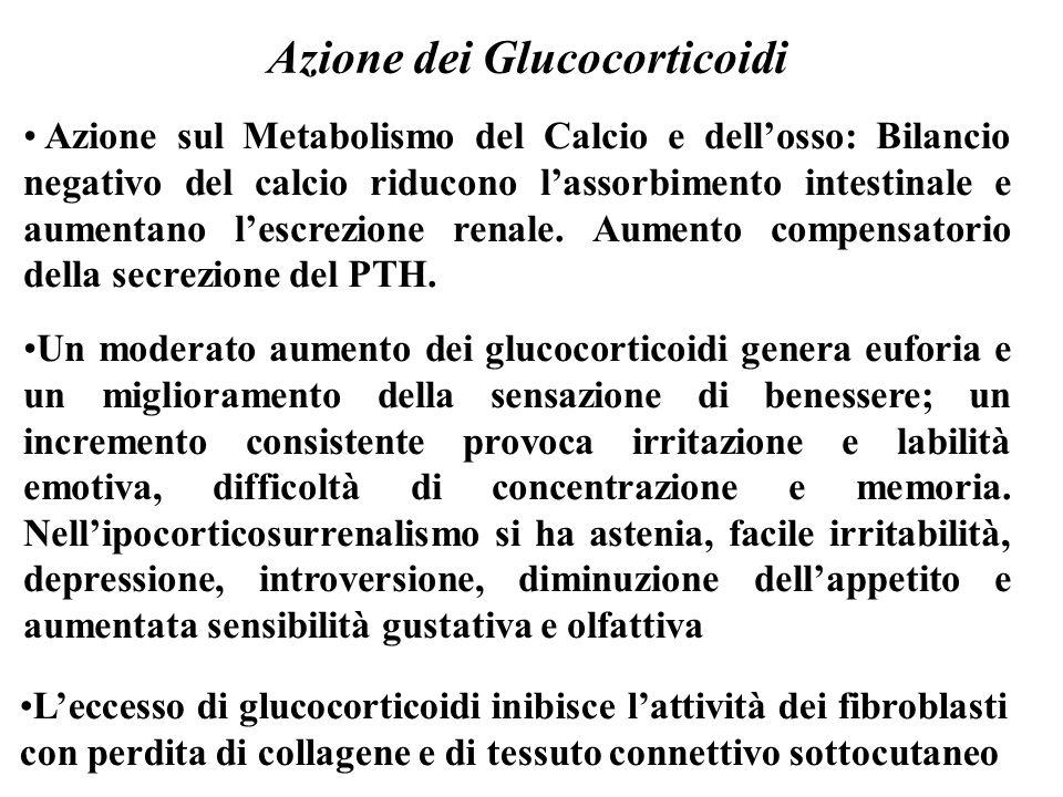 Azione dei Glucocorticoidi Azione sul Metabolismo del Calcio e dell'osso: Bilancio negativo del calcio riducono l'assorbimento intestinale e aumentano