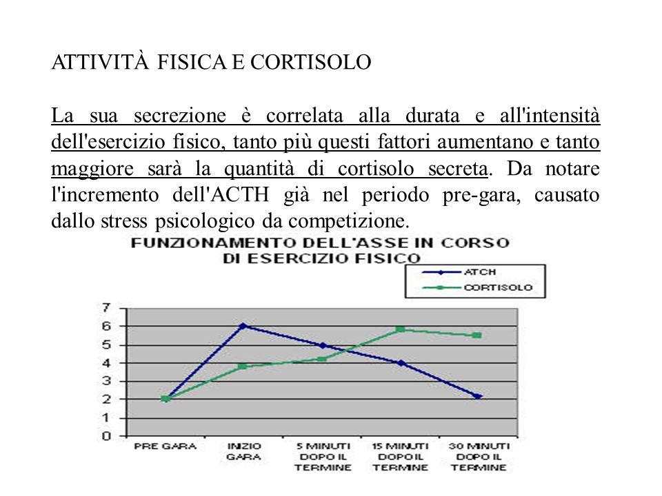 ATTIVITÀ FISICA E CORTISOLO La sua secrezione è correlata alla durata e all intensità dell esercizio fisico, tanto più questi fattori aumentano e tanto maggiore sarà la quantità di cortisolo secreta.