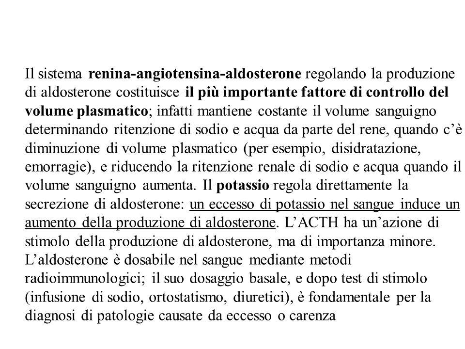 Il sistema renina-angiotensina-aldosterone regolando la produzione di aldosterone costituisce il più importante fattore di controllo del volume plasma