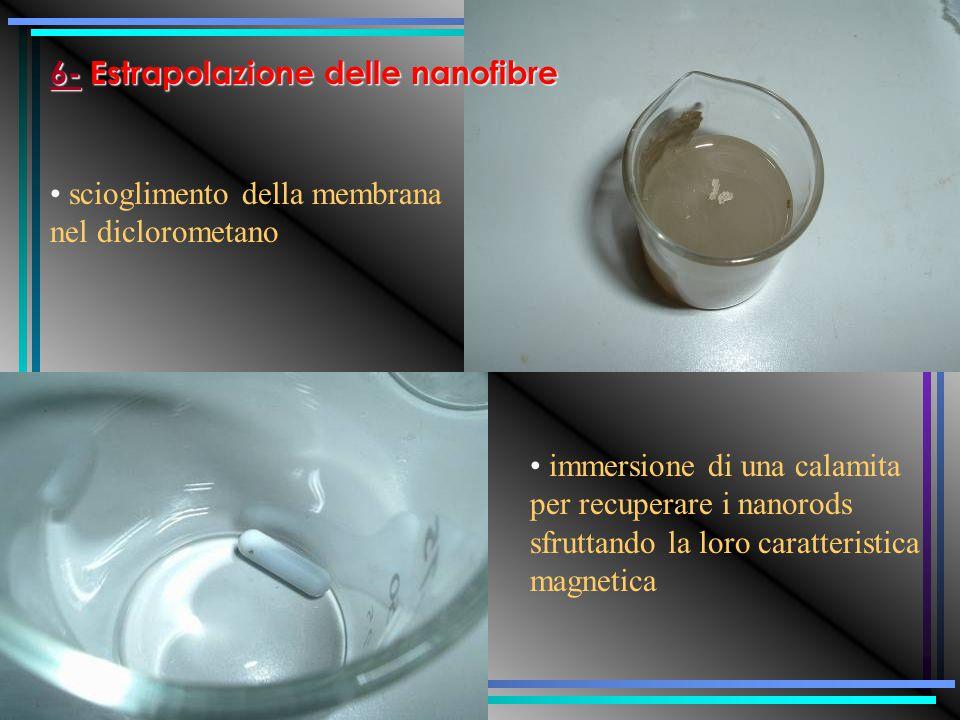 Al catodo si otterrà la deposizione del nichel (riduzione) All'anodo si avrà l'ossidazione del filo di nichel con il rilascio di ioni Ni ++ nella soluzione La membrana è pronta per l'operazione di peeling (rimozione della pellicola d'argento)