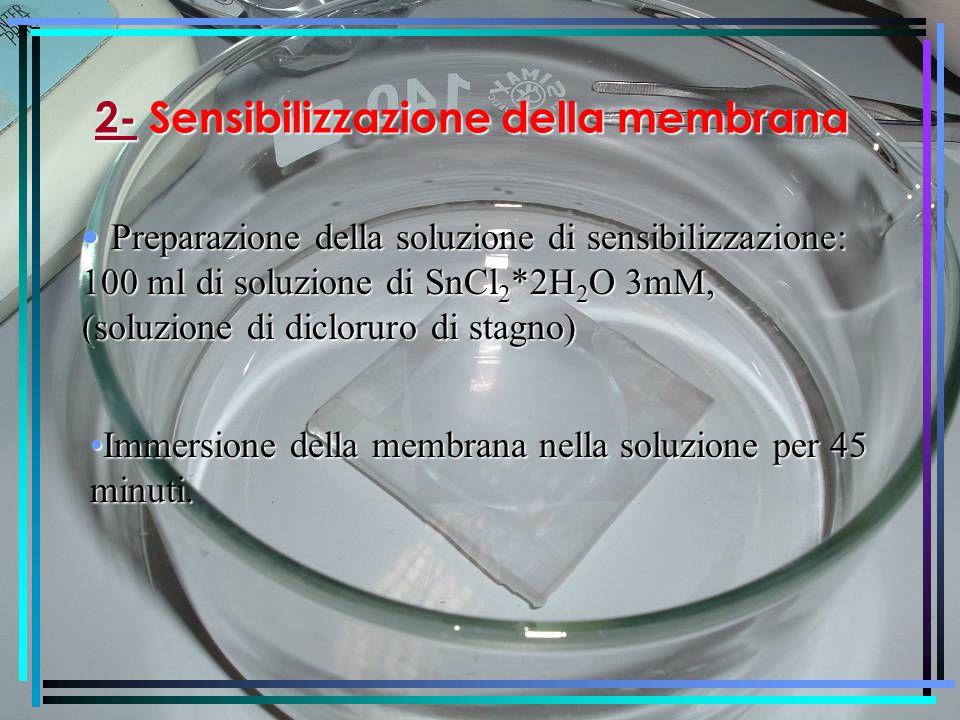 2-Sensibilizzazione della membrana 2- Sensibilizzazione della membrana Preparazione della soluzione di sensibilizzazione: 100 ml di soluzione di SnCl 2 *2H 2 O 3mM, (soluzione di dicloruro di stagno) Preparazione della soluzione di sensibilizzazione: 100 ml di soluzione di SnCl 2 *2H 2 O 3mM, (soluzione di dicloruro di stagno) Immersione della membrana nella soluzione per 45 minuti.Immersione della membrana nella soluzione per 45 minuti.