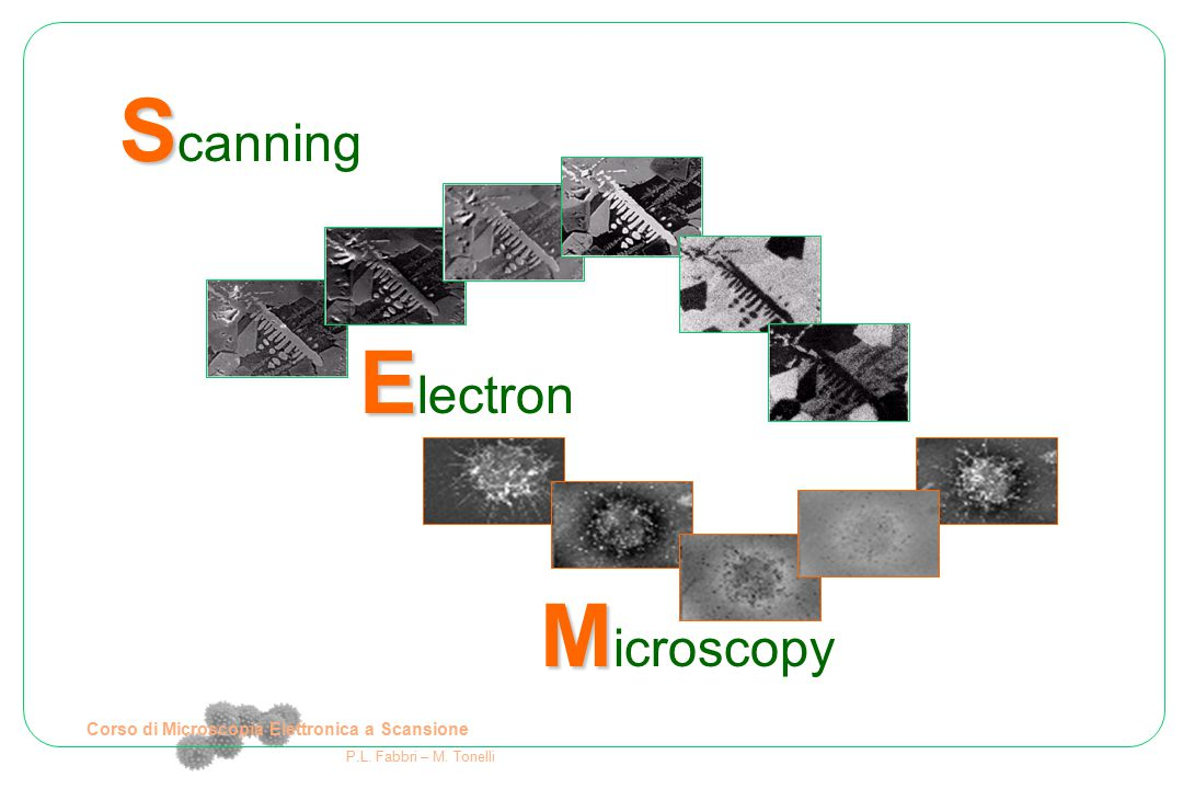 Schema di un microscopio generico Sistema di illuminazione: genera la sonda che interagisce col campione Lenti e diaframmi per controllare la sonda Raccolta del segnale e formazione dell'immagine Campione da osservare Corso di Microscopia Elettronica a Scansione P.L.