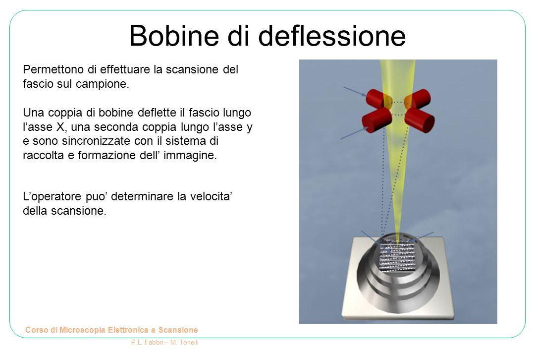 Corso di Microscopia Elettronica a Scansione P.L. Fabbri – M. Tonelli Bobine di deflessione Permettono di effettuare la scansione del fascio sul campi