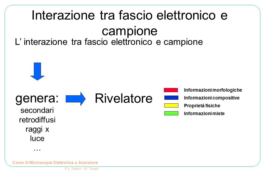 Interazione tra fascio elettronico e campione L' interazione tra fascio elettronico e campione genera: secondari retrodiffusi raggi x luce … Rivelator