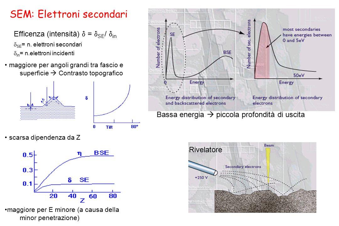 SEM: Elettroni secondari maggiore per angoli grandi tra fascio e superficie  Contrasto topografico scarsa dipendenza da Z maggiore per E minore (a ca