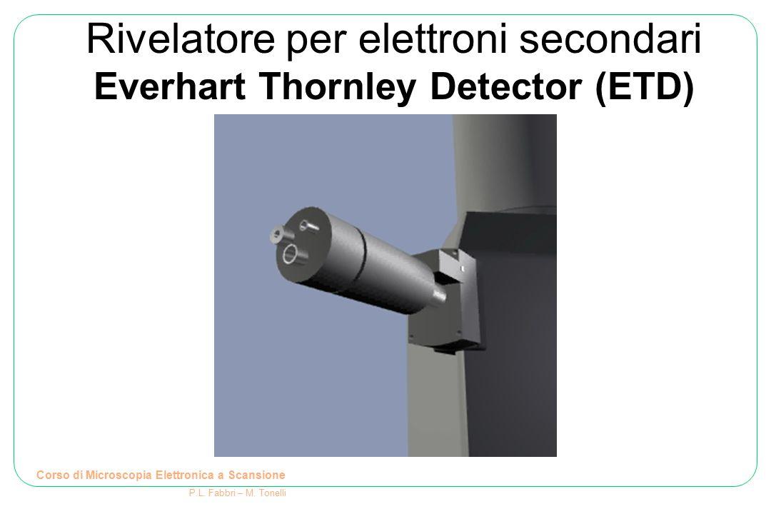 Rivelatore per elettroni secondari Everhart Thornley Detector (ETD) Corso di Microscopia Elettronica a Scansione P.L. Fabbri – M. Tonelli