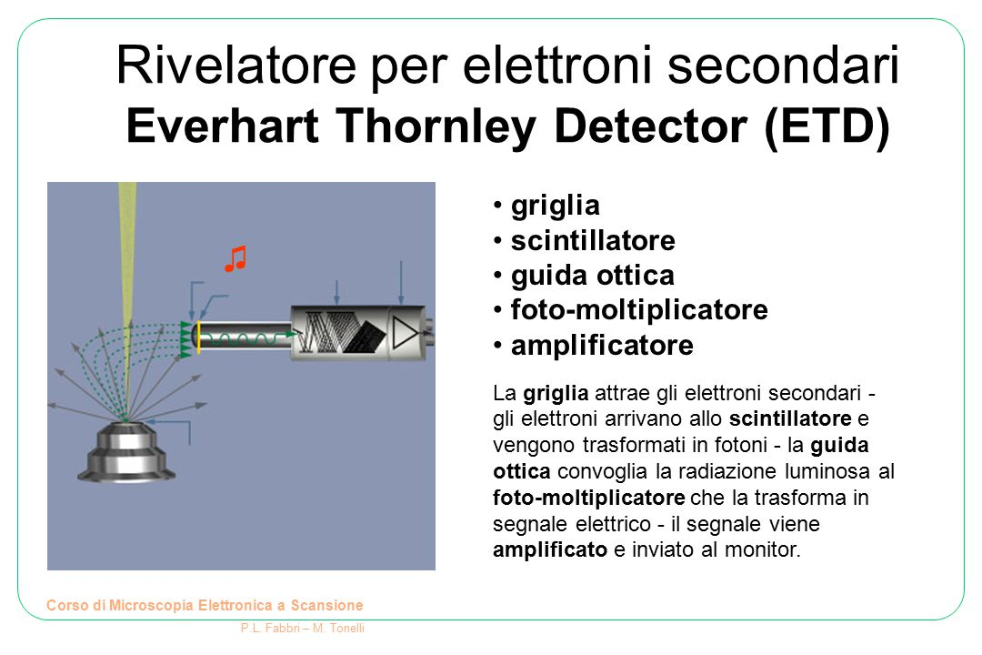 griglia scintillatore guida ottica foto-moltiplicatore amplificatore La griglia attrae gli elettroni secondari - gli elettroni arrivano allo scintilla