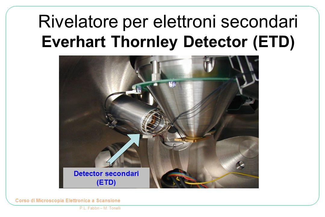 Detector secondari (ETD) Rivelatore per elettroni secondari Everhart Thornley Detector (ETD) Corso di Microscopia Elettronica a Scansione P.L. Fabbri