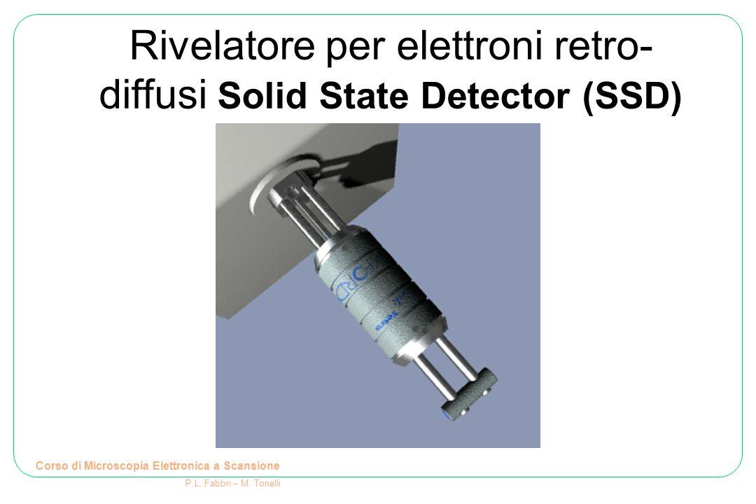 Rivelatore per elettroni retro- diffusi Solid State Detector (SSD) Corso di Microscopia Elettronica a Scansione P.L. Fabbri – M. Tonelli