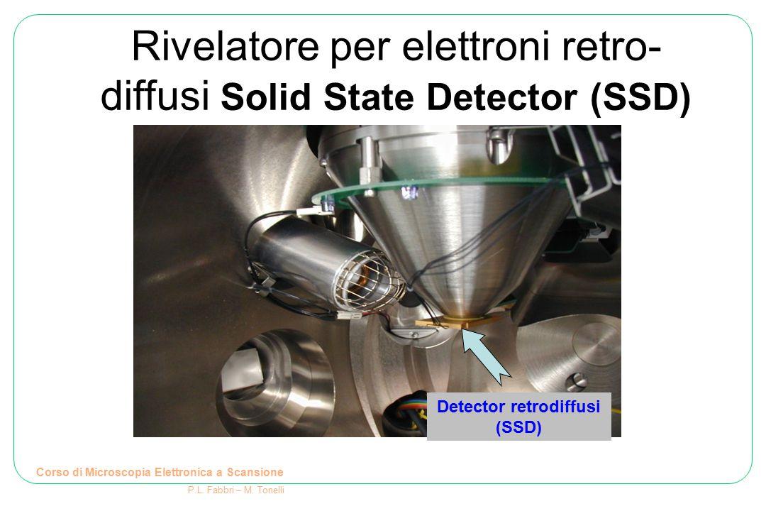 Rivelatore per elettroni retro- diffusi Solid State Detector (SSD) Detector retrodiffusi (SSD) Corso di Microscopia Elettronica a Scansione P.L. Fabbr