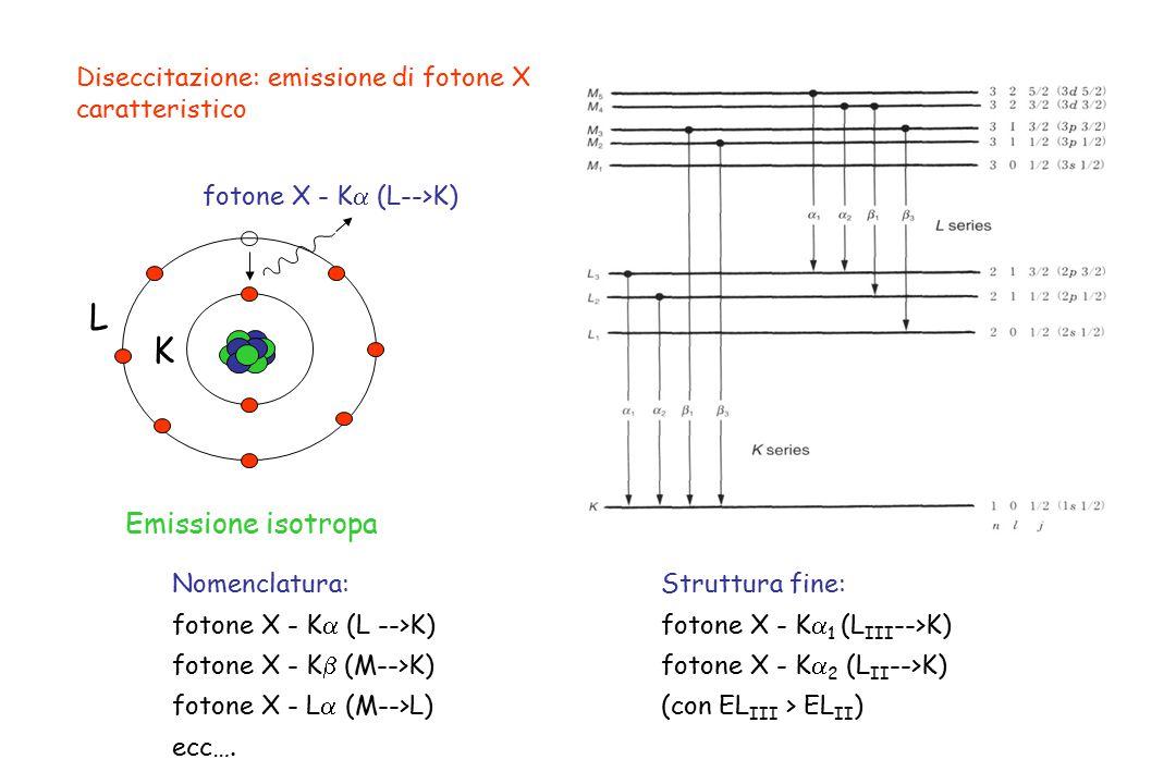 Diseccitazione: emissione di fotone X caratteristico L K fotone X - K  (L-->K) Emissione isotropa Struttura fine: fotone X - K  1 (L III -->K) foton
