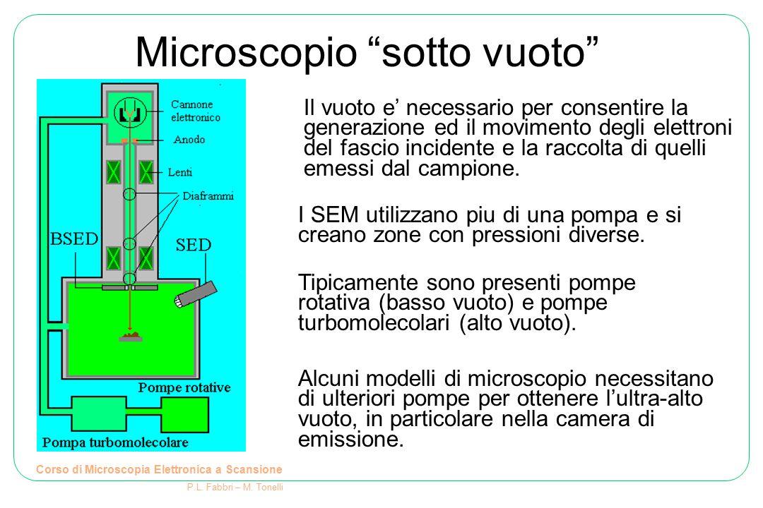 Microscopio sotto vuoto Corso di Microscopia Elettronica a Scansione P.L. Fabbri – M. Tonelli