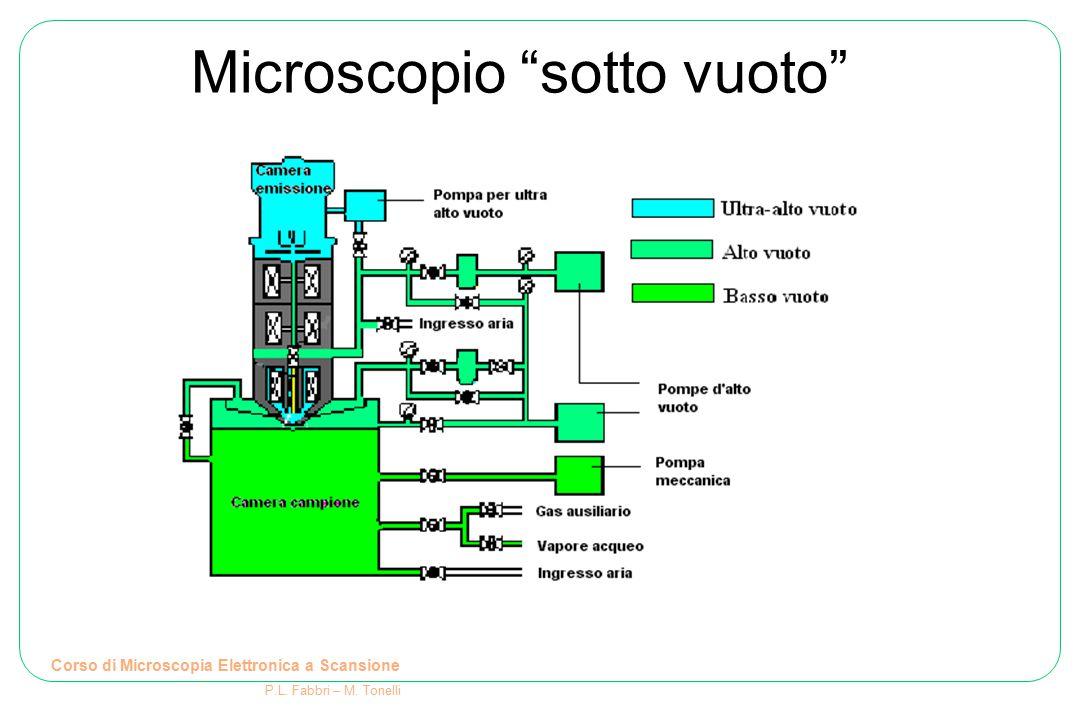 Schema di un microscopio elettronico Cannone elettronico: genera il fascio di elettroni che interagisce col campione Corso di Microscopia Elettronica a Scansione P.L.