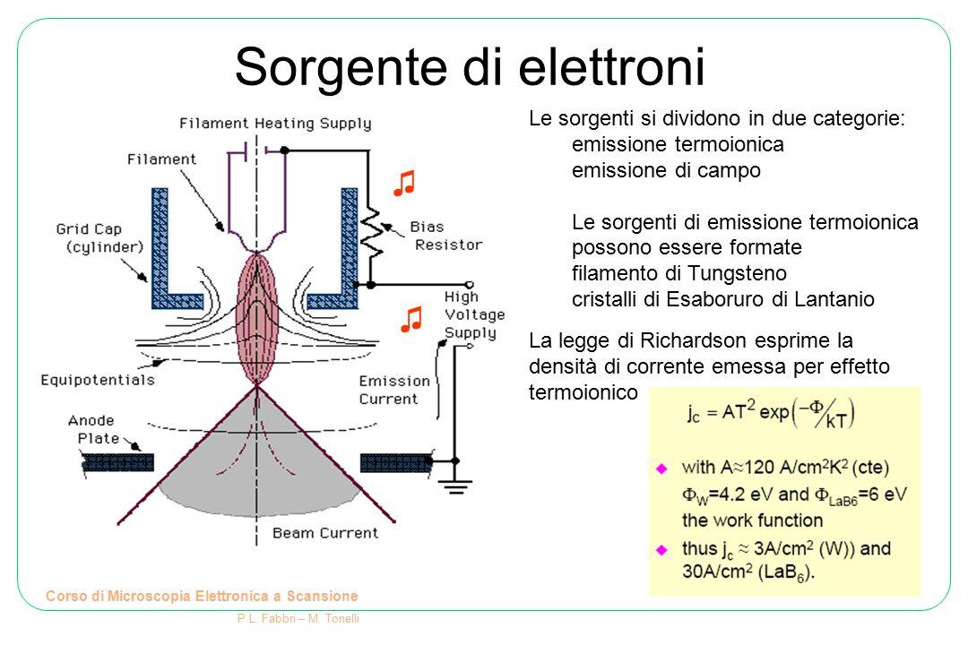 Corso di Microscopia Elettronica a Scansione P.L. Fabbri – M. Tonelli Sorgente di elettroni Le sorgenti si dividono in due categorie: emissione termoi