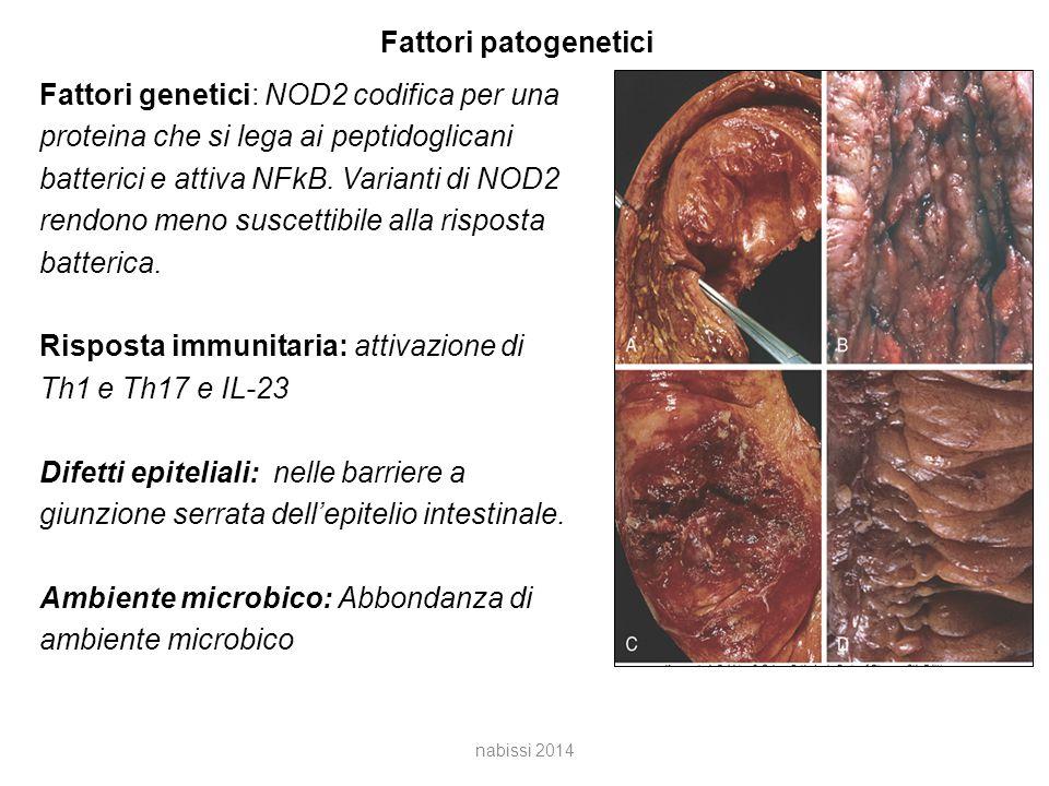 Fattori patogenetici Fattori genetici: NOD2 codifica per una proteina che si lega ai peptidoglicani batterici e attiva NFkB.