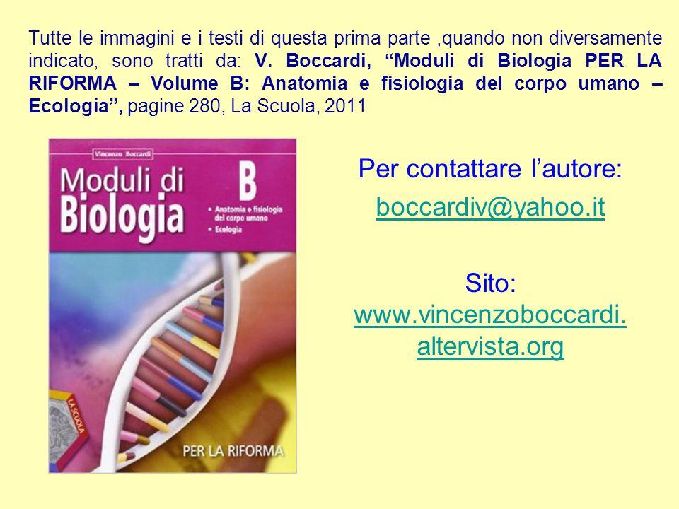 Per contattare l'autore: boccardiv@yahoo.it Sito: www.vincenzoboccardi. altervista.org www.vincenzoboccardi. altervista.org Tutte le immagini e i test