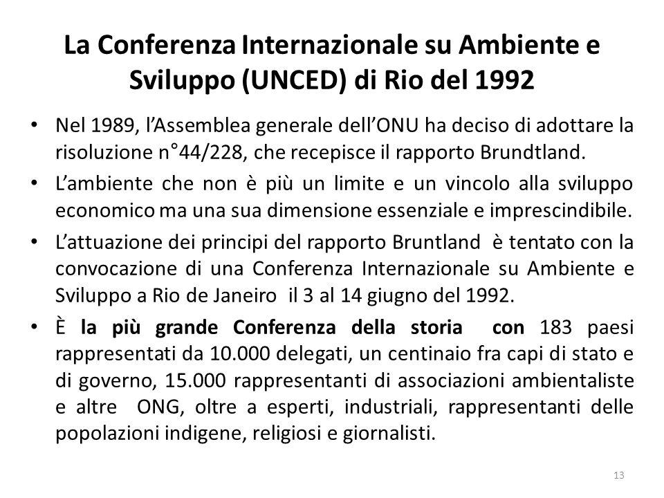 La Conferenza Internazionale su Ambiente e Sviluppo (UNCED) di Rio del 1992 Nel 1989, l'Assemblea generale dell'ONU ha deciso di adottare la risoluzio