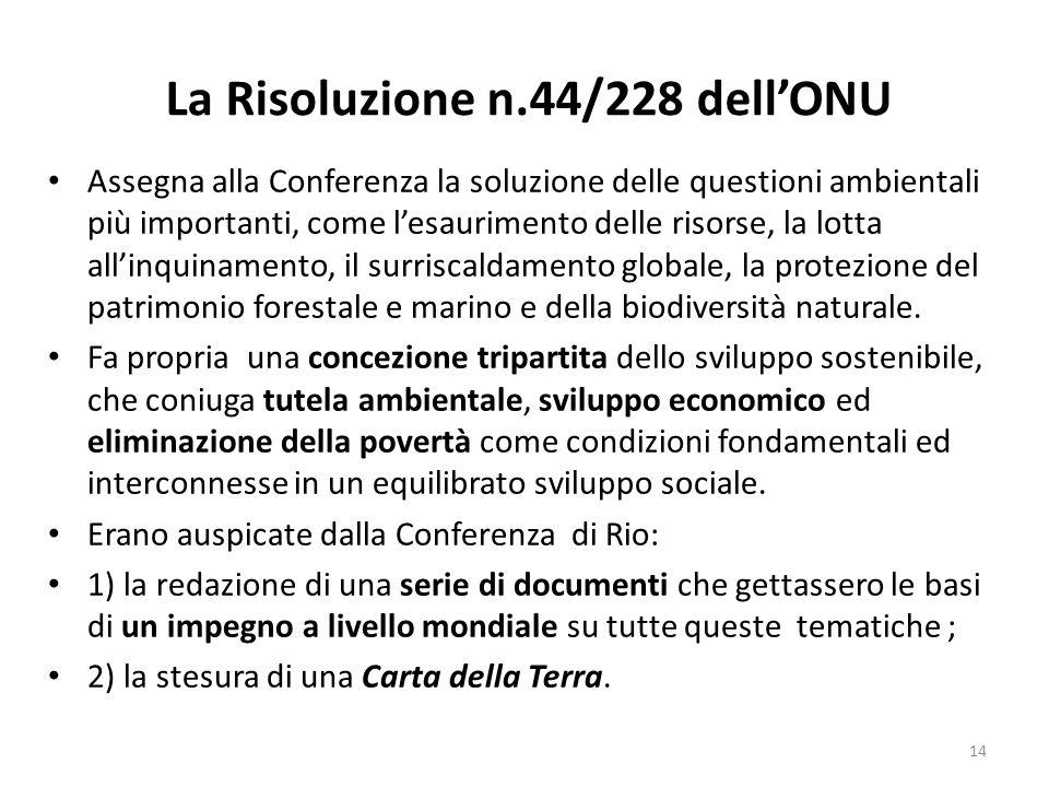 La Risoluzione n.44/228 dell'ONU Assegna alla Conferenza la soluzione delle questioni ambientali più importanti, come l'esaurimento delle risorse, la
