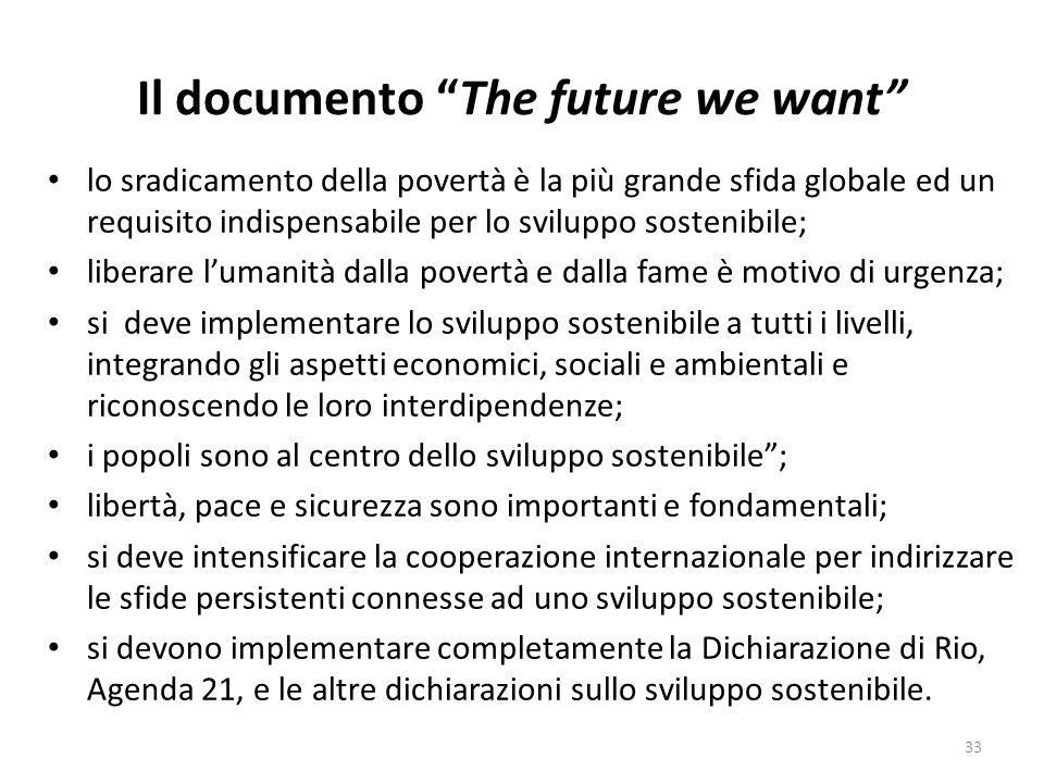 Il documento The future we want lo sradicamento della povertà è la più grande sfida globale ed un requisito indispensabile per lo sviluppo sostenibile; liberare l'umanità dalla povertà e dalla fame è motivo di urgenza; si deve implementare lo sviluppo sostenibile a tutti i livelli, integrando gli aspetti economici, sociali e ambientali e riconoscendo le loro interdipendenze; i popoli sono al centro dello sviluppo sostenibile ; libertà, pace e sicurezza sono importanti e fondamentali; si deve intensificare la cooperazione internazionale per indirizzare le sfide persistenti connesse ad uno sviluppo sostenibile; si devono implementare completamente la Dichiarazione di Rio, Agenda 21, e le altre dichiarazioni sullo sviluppo sostenibile.