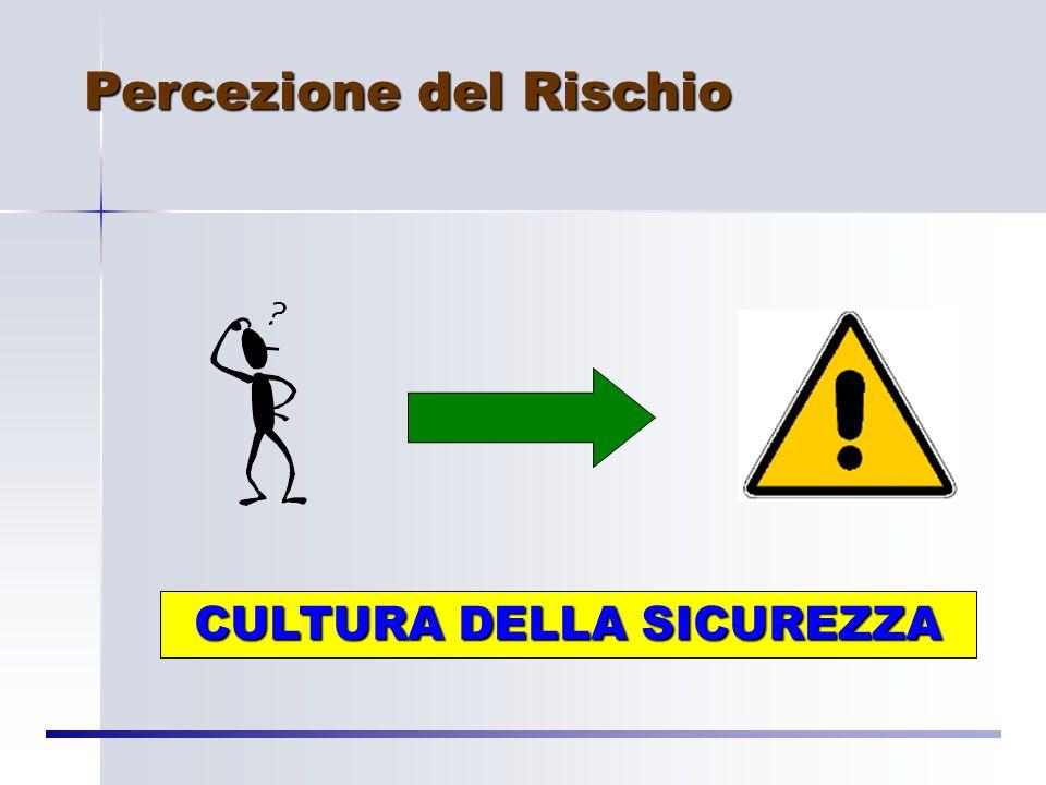 Rischio Soggettivo Il rischio è legato al livello culturale o concezione di vita-grado di libertà (storia e utopia di una popolazione, possibilità di