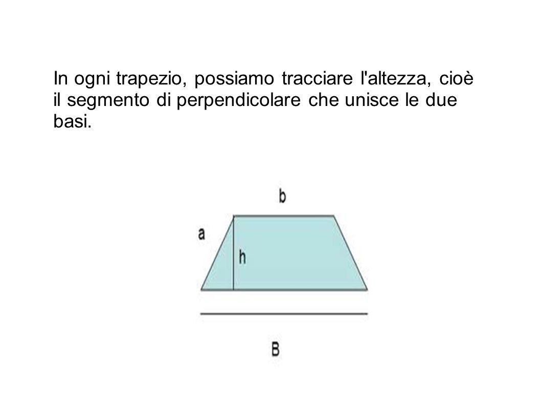 In ogni trapezio, possiamo tracciare l'altezza, cioè il segmento di perpendicolare che unisce le due basi.
