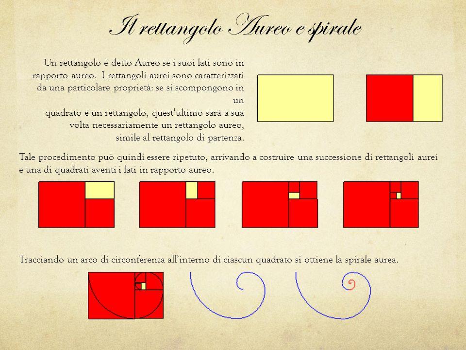 Il rettangolo Aureo e spirale Tracciando un arco di circonferenza all'interno di ciascun quadrato si ottiene la spirale aurea.