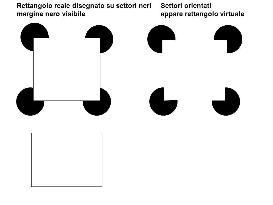 Rettangolo reale disegnato su settori neri margine nero visibile Settori orientati appare rettangolo virtuale