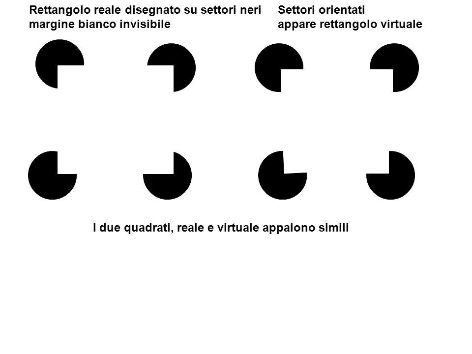 Rettangolo reale disegnato su settori neri margine bianco invisibile Settori orientati appare rettangolo virtuale I due quadrati, reale e virtuale app