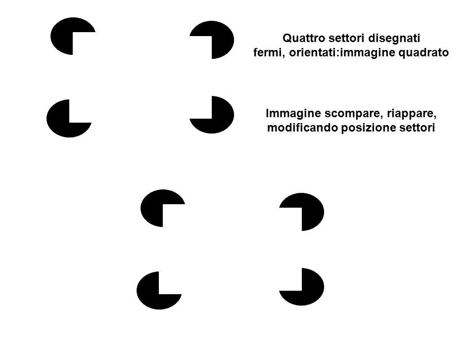 Immagine virtuale triangolare appare, scompare, modificando posizione settori