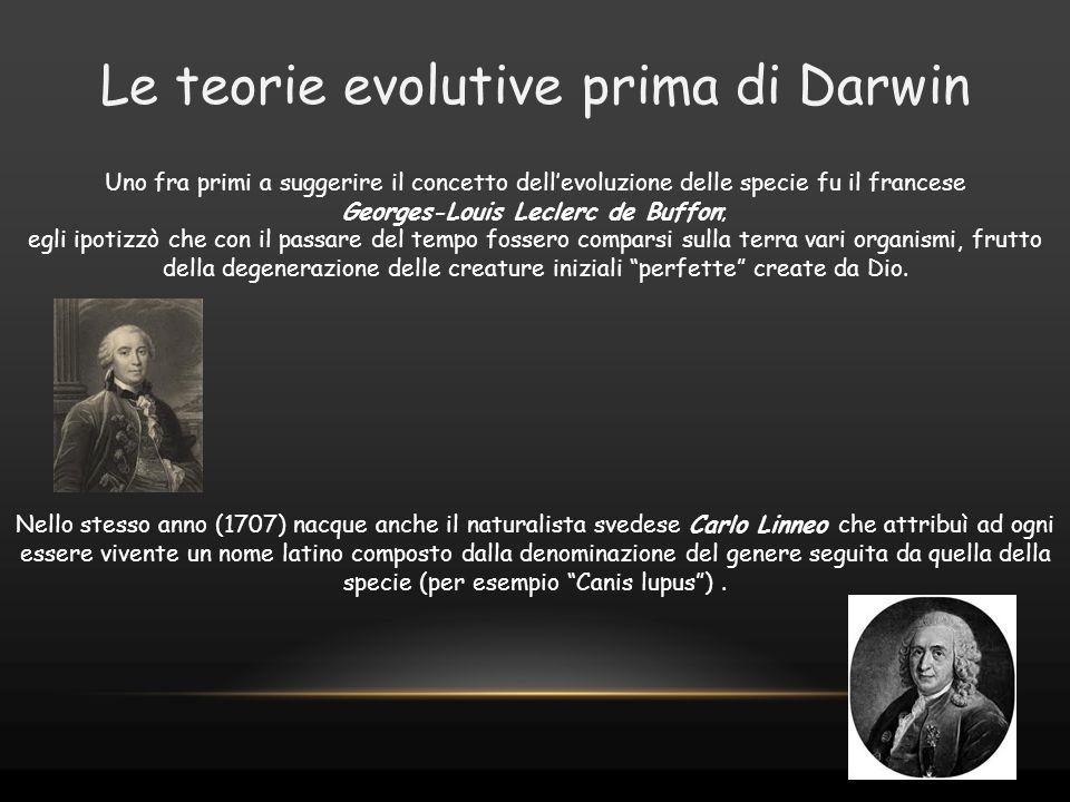 Le teorie evolutive prima di Darwin Uno fra primi a suggerire il concetto dell'evoluzione delle specie fu il francese Georges-Louis Leclerc de Buffon;