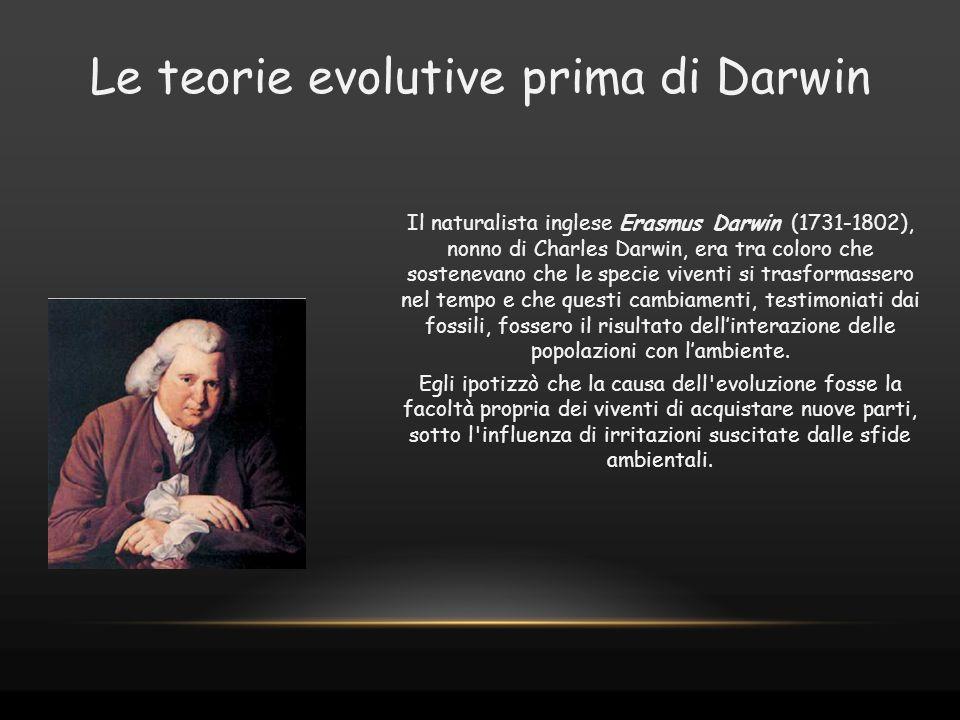 Il naturalista inglese Erasmus Darwin (1731-1802), nonno di Charles Darwin, era tra coloro che sostenevano che le specie viventi si trasformassero nel