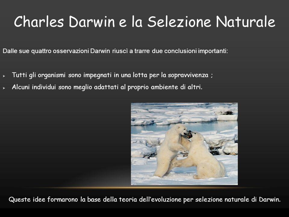 Charles Darwin e la Selezione Naturale Dalle sue quattro osservazioni Darwin riuscì a trarre due conclusioni importanti:  Tutti gli organismi sono im