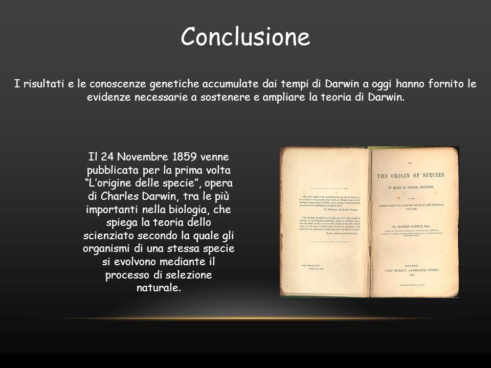 Conclusione I risultati e le conoscenze genetiche accumulate dai tempi di Darwin a oggi hanno fornito le evidenze necessarie a sostenere e ampliare la