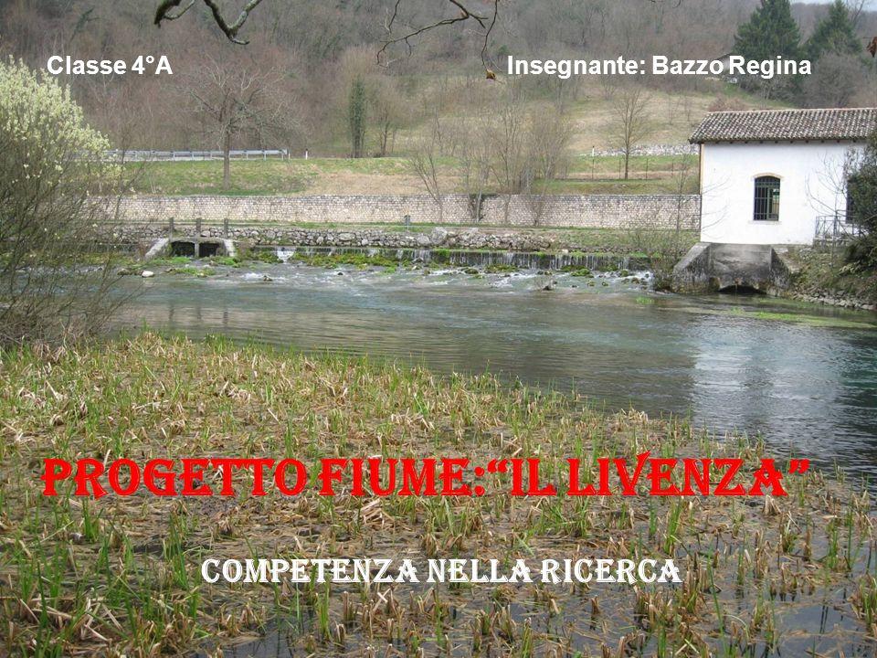 Progetto fiume: Il livenza Competenza nella ricerca Classe 4°A Insegnante: Bazzo Regina
