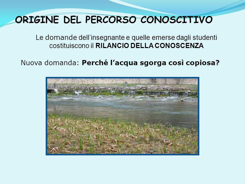 ORIGINE DEL PERCORSO CONOSCITIVO Le domande dell'insegnante e quelle emerse dagli studenti costituiscono il RILANCIO DELLA CONOSCENZA Nuova domanda: Perché l'acqua sgorga così copiosa?