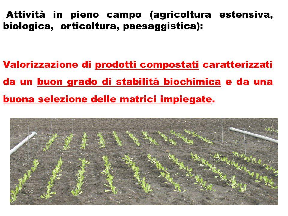 Attività in pieno campo (agricoltura estensiva, biologica, orticoltura, paesaggistica): Valorizzazione di prodotti compostati caratterizzati da un buo