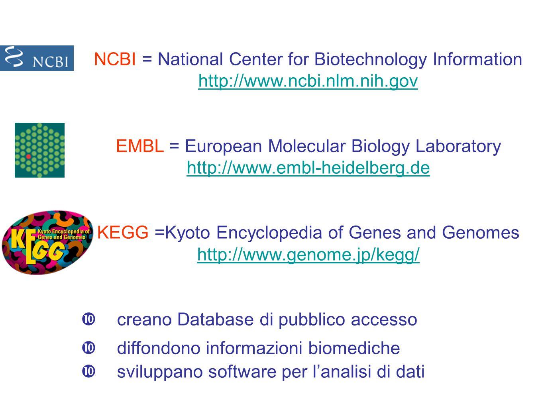 NCBI = National Center for Biotechnology Information http://www.ncbi.nlm.nih.gov EMBL = European Molecular Biology Laboratory http://www.embl-heidelberg.de KEGG =Kyoto Encyclopedia of Genes and Genomes http://www.genome.jp/kegg/  creano Database di pubblico accesso  diffondono informazioni biomediche  sviluppano software per l'analisi di dati