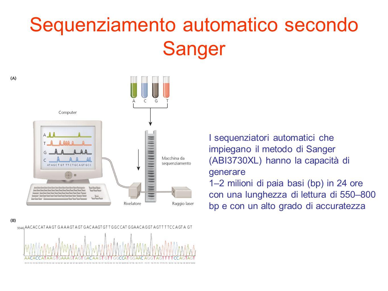Sequenziamento automatico secondo Sanger I sequenziatori automatici che impiegano il metodo di Sanger (ABI3730XL) hanno la capacità di generare 1–2 milioni di paia basi (bp) in 24 ore con una lunghezza di lettura di 550–800 bp e con un alto grado di accuratezza