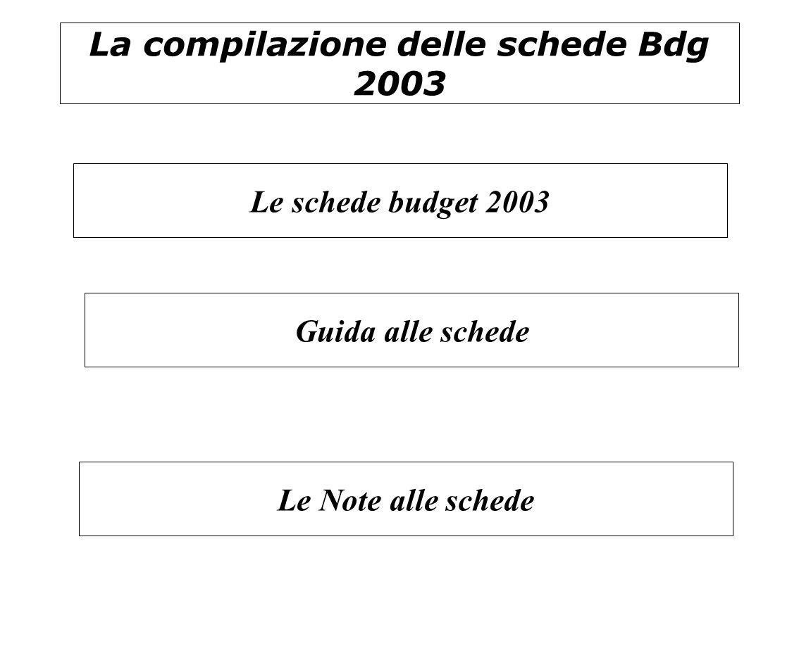 La compilazione delle schede Bdg 2003 Guida alle schede Le schede budget 2003 Le Note alle schede
