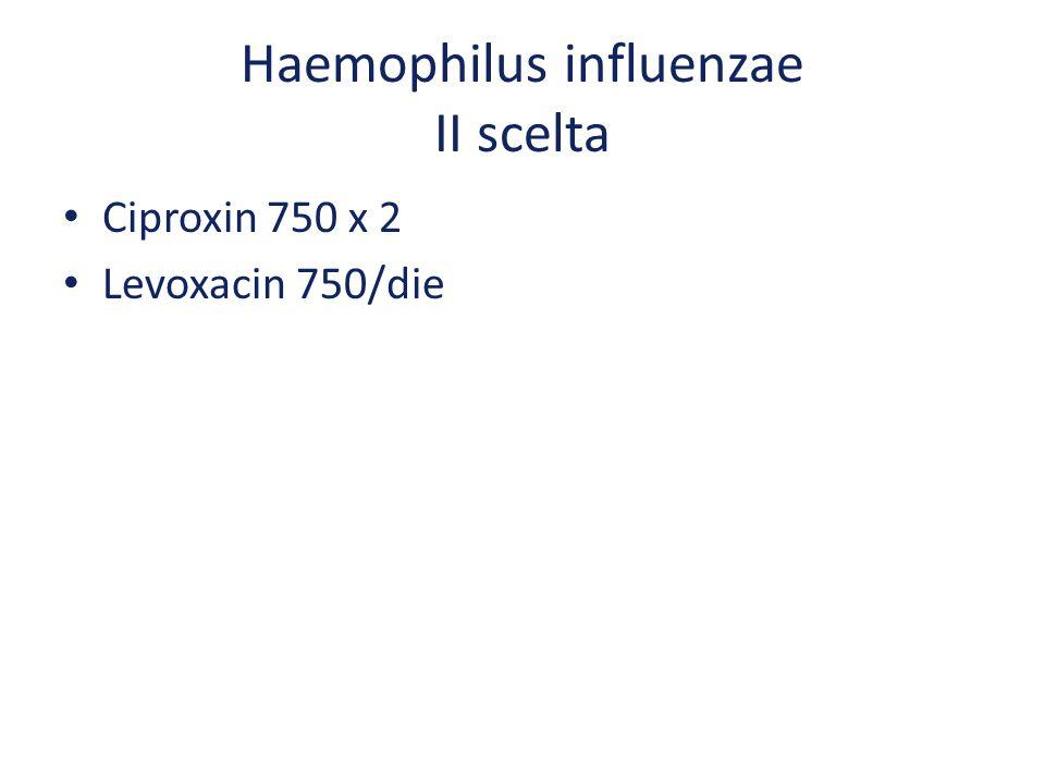 Haemophilus influenzae II scelta Ciproxin 750 x 2 Levoxacin 750/die