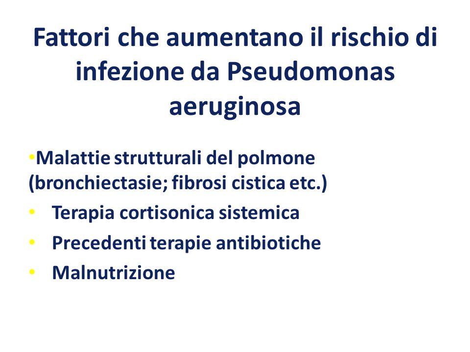Fattori che aumentano il rischio di infezione da Pseudomonas aeruginosa Malattie strutturali del polmone (bronchiectasie; fibrosi cistica etc.) Terapi