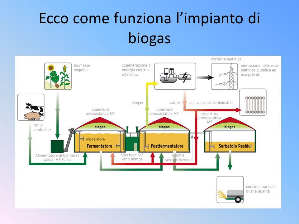 Ecco come funziona l'impianto di biogas