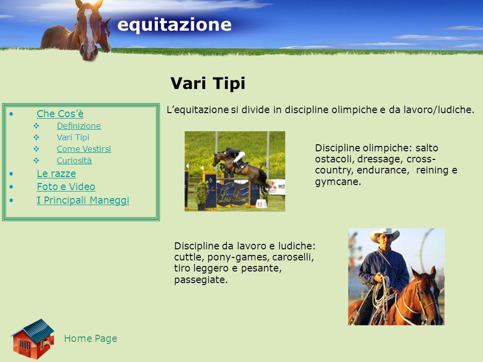 equitazione Vari Tipi Home Page L'equitazione si divide in discipline olimpiche e da lavoro/ludiche.