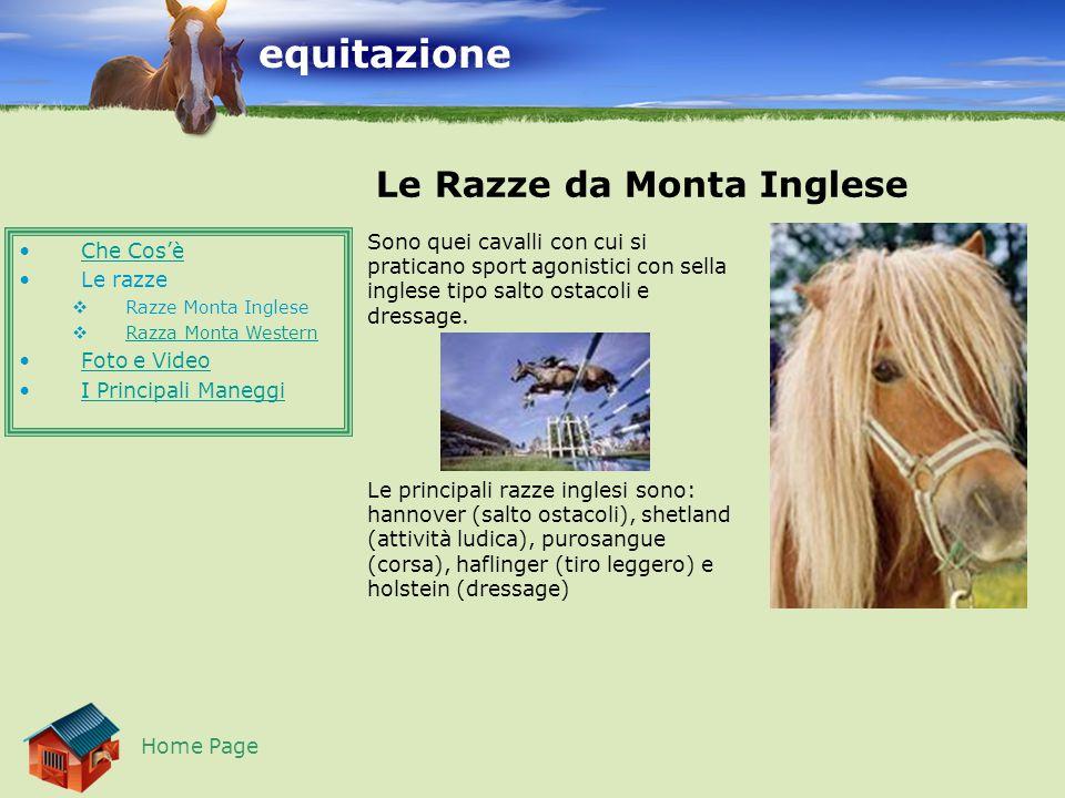 equitazione Le Razze da Monta Western Home Page Sono quei cavalli che si utilizzano per sport agonistici e non, come ad esempio il reining, il rodeo e il cuttle (inseguimento dei vitelli).