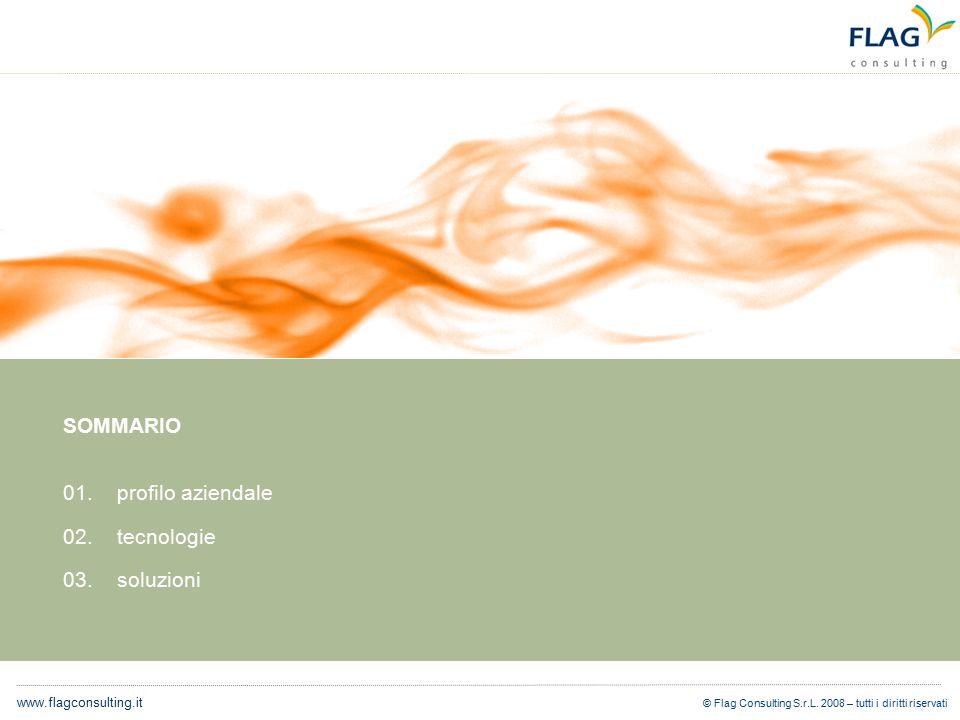 © Flag Consulting S.r.L. 2008 – tutti i diritti riservati www.flagconsulting.it SOMMARIO 01.